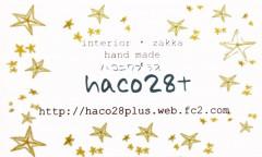 haco28